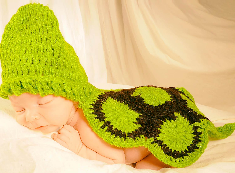 BabySchildkröte-Kopie